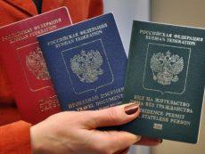 Как получить вид на жительство в РФ